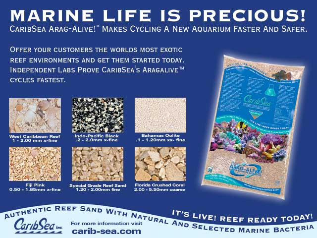 Carib Sea Arag Alive Glossy