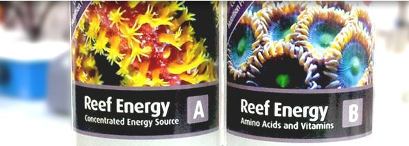 Advanced aquarists know the that gorgeous corals need more than just light and water changes.